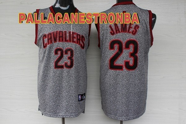 Offerte Maglia NBA 2013 Fashion Statico Cleveland Cavaliers NO.23 James